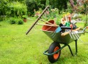 Survey reveals most people find gardening a chore